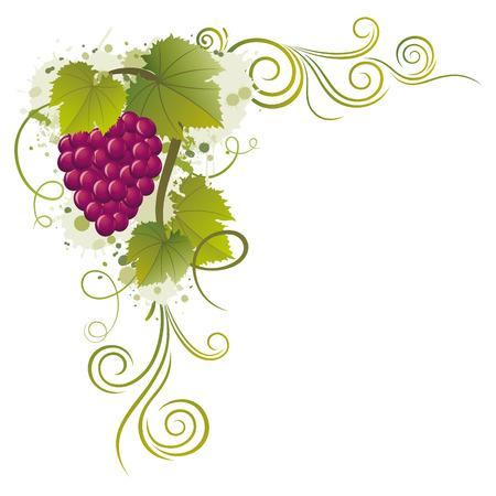 grape borders