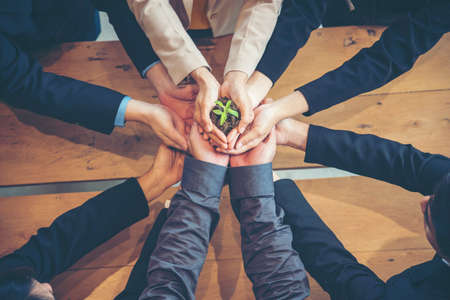 Photo pour Green Business Meeting. United Partners Team with hands together holding plant green trusted friends. Hands stacked Holding with sustainability partners. Trust business authentic of people. - image libre de droit