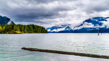 Photo for Logs floating in Pitt Lake under a dark cloudy sky with rain clouds hanging around the Mountains of the Coast Mountain Range in the Fraser Valley of British Columbia, Canada - Royalty Free Image