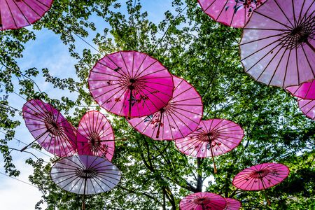 Photo for Pink Chinese Umbrellas or Parasols under a tree canopy in the Yale Town suburb of Vancouver, British Columbia, Canada - Royalty Free Image