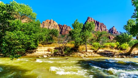 Photo pour The Massive Red, Pink and Cream Sandstone Cliffs of the Watchman and Bridge Mountain viewed from the Pa'rus Trail as it follows the meandering Virgin River in Zion National Park in Utah, USA - image libre de droit