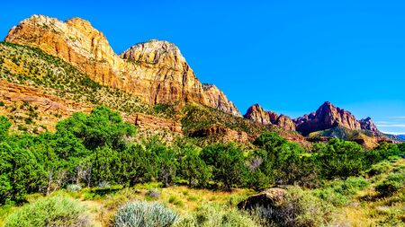 Photo pour The Watchman and Bridge Mountain viewed from the Pa'rus Trail as it follows along and over the meandering Virgin River in Zion National Park in Utah, USA - image libre de droit