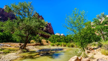 Photo for Royalty-free stock photo ID: 1481137592  The Virgin River flows through the Zion Canyon with Jacob Peak on the left, one of the three peaks in the Court of the Patriarchs, in Zion National Park in Utah, United Sates - Royalty Free Image