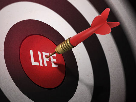 LIFE target hitting by dart arrow, 3D illustration concept image