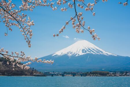 Photo pour mt.Fuji in kawaguchiko lake,Kawaguchiko lake of Japan,Mount Fuji, Kawaguchi Lake, Japan,with,Spring Cherry blossoms, pink flowers,Cherry blossoms or Sakura and Mountain Fuji at the river in morning - image libre de droit