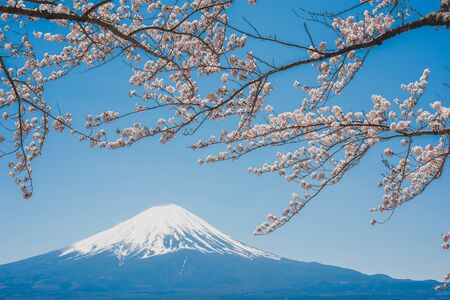 Photo for mt.Fuji in kawaguchiko lake,Kawaguchiko lake of Japan,Mount Fuji, Kawaguchi Lake, Japan,with,Spring Cherry blossoms, pink flowers,Cherry blossoms or Sakura and Mountain Fuji at the river in morning - Royalty Free Image