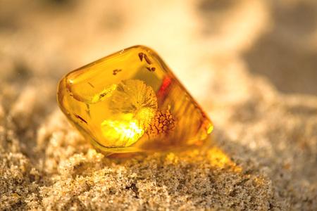 Foto de Amber on a beach of the Baltic Sea - Imagen libre de derechos