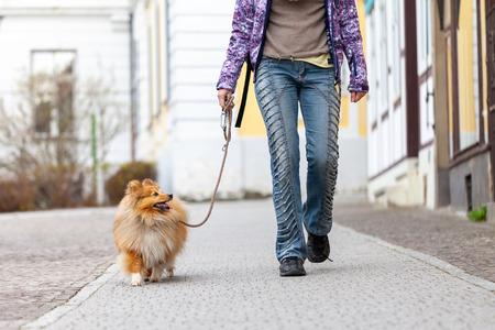 Foto de A woman leads her dog on a leash - Imagen libre de derechos