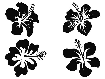 Illustration pour isolated black Hibiscus vector silhouettes on white background - image libre de droit