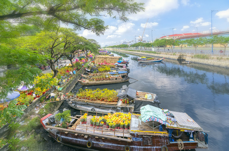 Ho Chi Minh City, Vietnam - January 26, 2017: Flowers at the flower market on canal wharf. This is place where farmers sell apricot blossom and other flowers on Lunar New Year in Vietnam