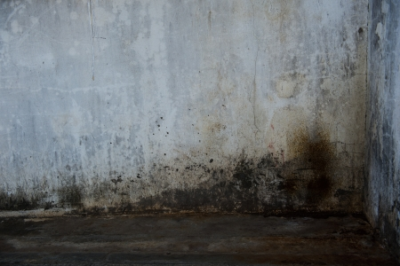 Old Grunge Concrete Wall Background
