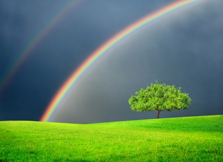 Photo pour Green field with tree and double rainbow - image libre de droit