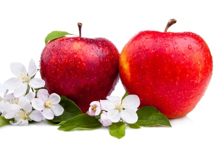 Two Juicy Red Apple with flowers and water droplets on a white background