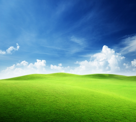 Foto per field of grass and perfect sky - Immagine Royalty Free