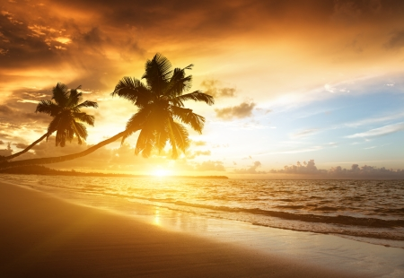 sunset on the beach of caribbean seaの写真素材