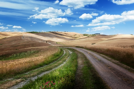 Road between the Fields of T