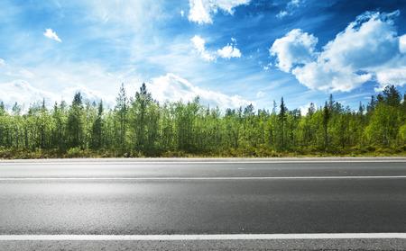 Photo pour asphalt road and forest - image libre de droit