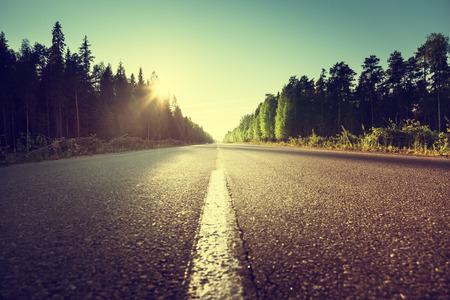 Foto de road in summer forest - Imagen libre de derechos