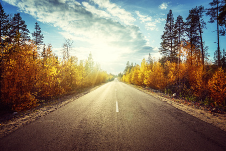 road in autumn  mountains