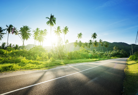 Photo pour empty road in jungle of Seychelles islands - image libre de droit