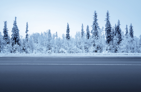 Foto per road in winter forest - Immagine Royalty Free