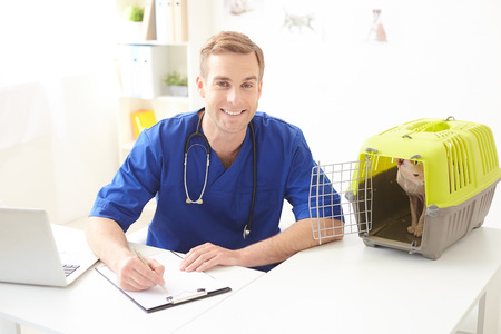 Cheerful male veterinarian is writing diagnosis of animal health. He is sitting at desk near carrier box with cat inside. The man is looking at camera and smiling