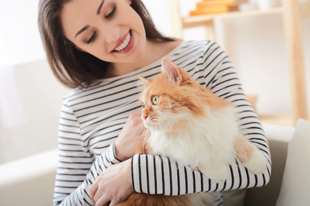 Attractive girl is playing with her cat. She is sitting on sofa and holding a pet. The lady is smiling
