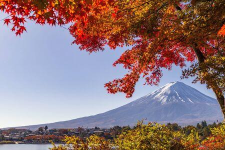 Foto für Fuji mountain and Red Maple Leaves blooming vividly in Autumn, Kawaguchiko Lake, Japan - Lizenzfreies Bild