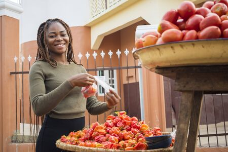 Photo pour beautiful young african woman selling tomatoes and peppers in a local african market - image libre de droit