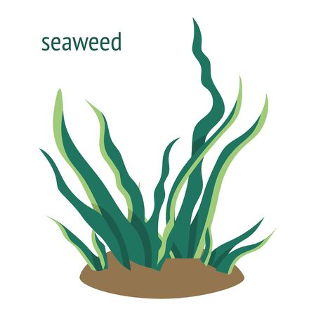 Illustration pour illustration with green seaweed. underwater plants cartoon icon - image libre de droit
