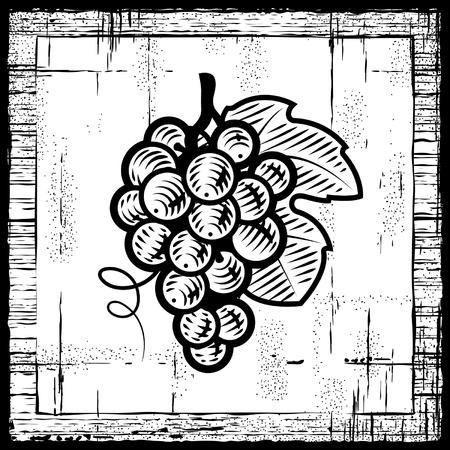 Retro grapes bunch black and white