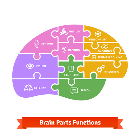 Puzzle tiled brain functions shilouette with icons. Flat colourful vector.