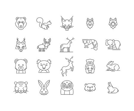 Illustration pour Forest animals line icons, linear signs, vector set, outline concept illustration - image libre de droit