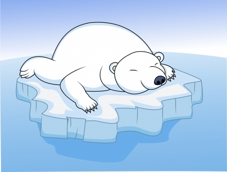 polar bear resting on an ice