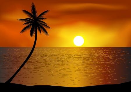 Illustration pour Tropical beach background - image libre de droit