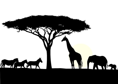 Africa silhouette background