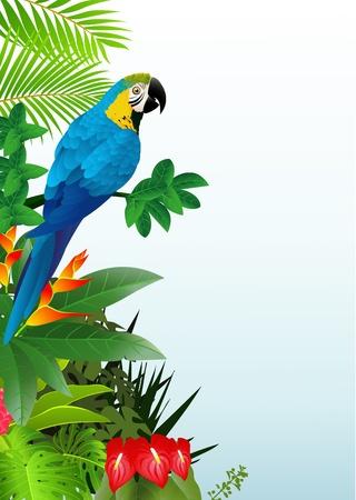 Illustration pour illustratio of Macaw bird in the tropical forest  - image libre de droit