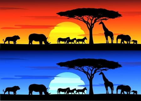 Ilustración de Beautiful sunset background on Africa wildlife - Imagen libre de derechos