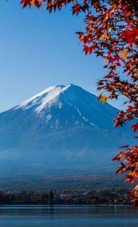 Photo pour Mt.Fuji view with maple leaves foreground. - image libre de droit