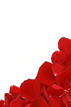 Photo pour corner frame from scattered loose red rose petals - image libre de droit