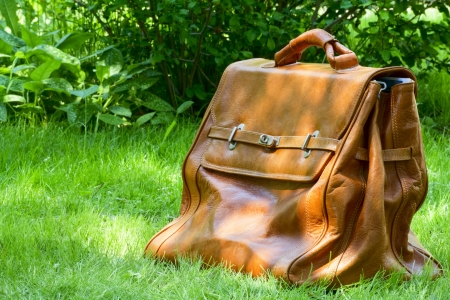 Sunlit leather carpetbag on a background of green grass