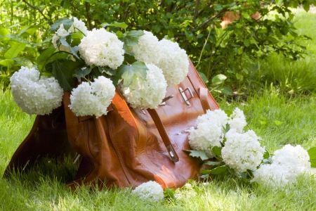 Leather carpetbag full of white flowers on a background of green grass