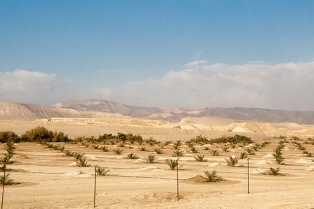 Desert and mountain scenery, Israel