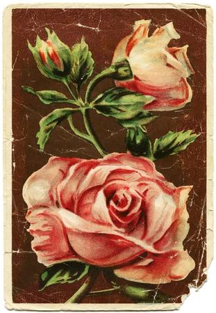 Roses - picture artist Ivan Shvedov, Rostov-on-Don, USSR, 1950