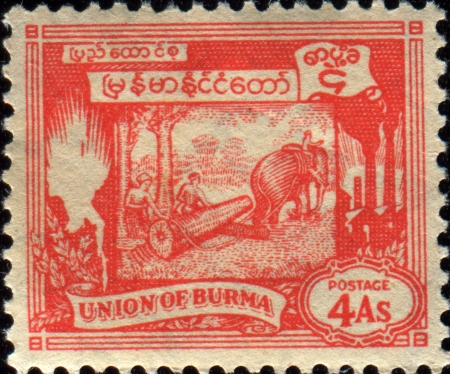 BURMA - CIRCA 1949  A stamp printed in Burma shows Elephant hauling log, circa 1949