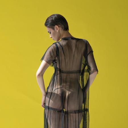 Photo pour young woman posing in the transparent dress - image libre de droit