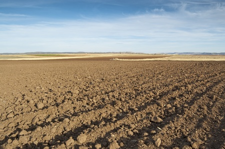 Ploughed field in an arable landscape in Ciudad Real province, Spain