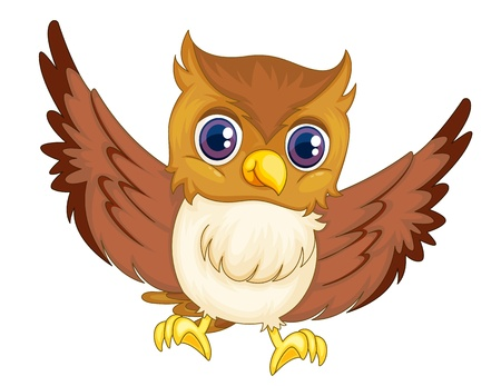 Illustration of an isolated comical owl