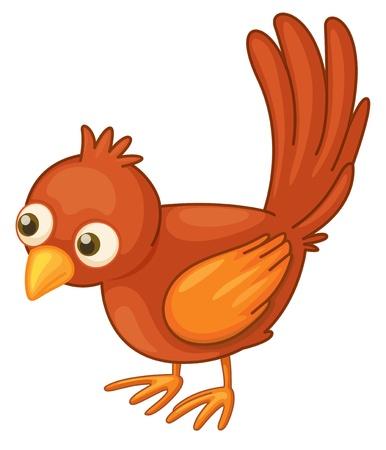 Illustration pour Cute red bird on a white background - image libre de droit