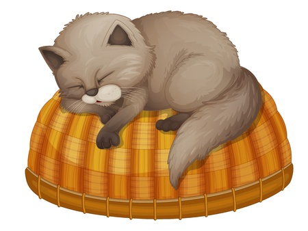 Illustration of cat sleeping on a basket